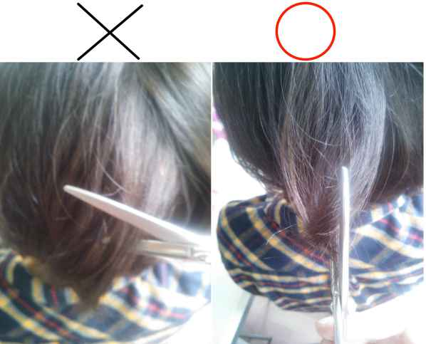 髪の毛は縦にハサミを入れる